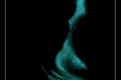 hippocampus-32