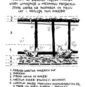 Archeologia mojego balkonu