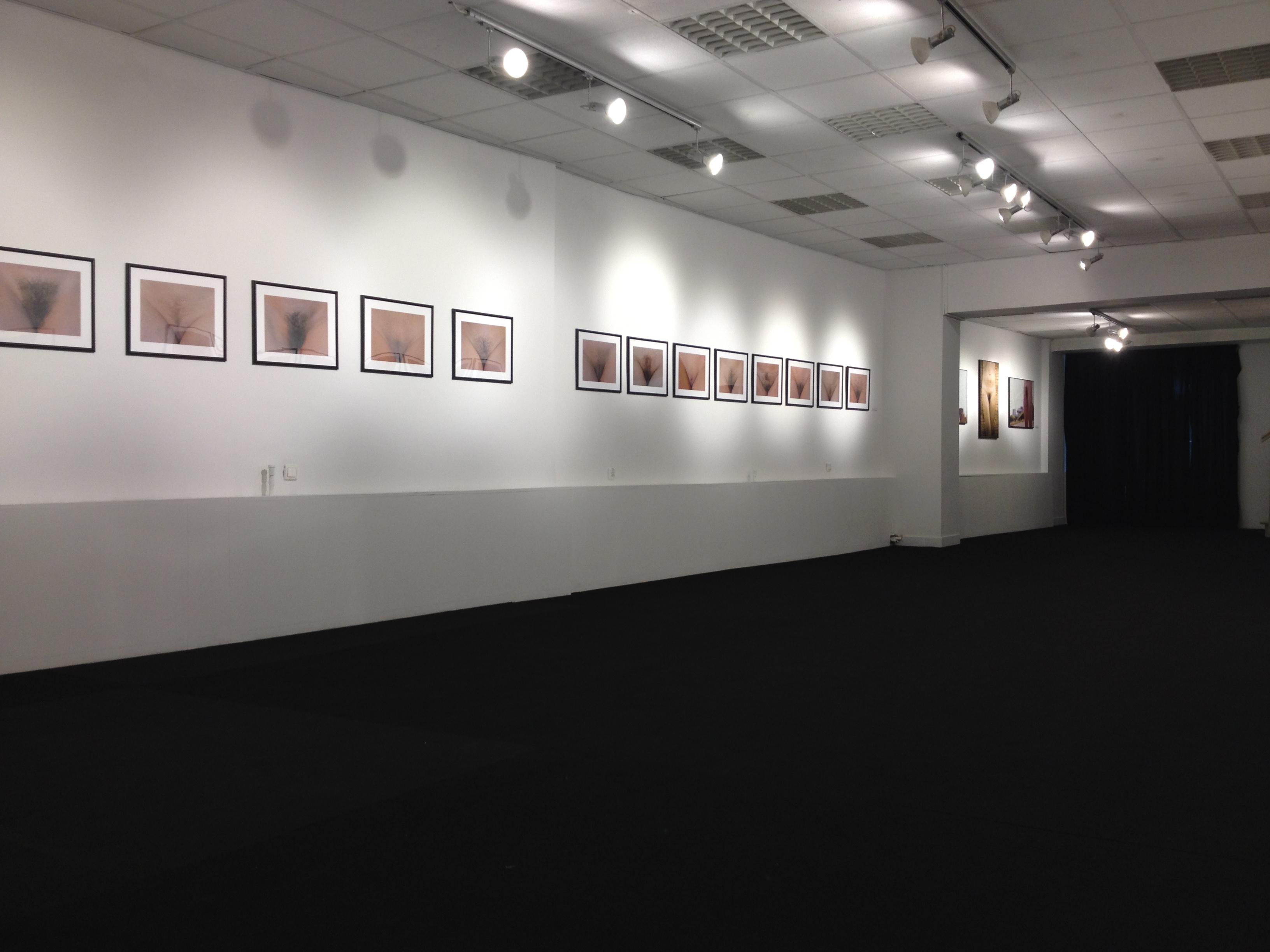 Miasto Ogrodów, Marlena Niestrój, widok ogólny wystawy, 2015, fot. Marlena Niestrój, źródło prywatne